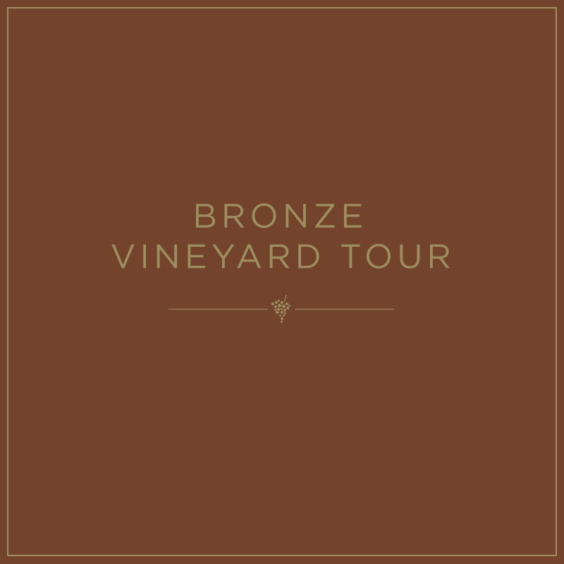 Bronze Vineyard Tour