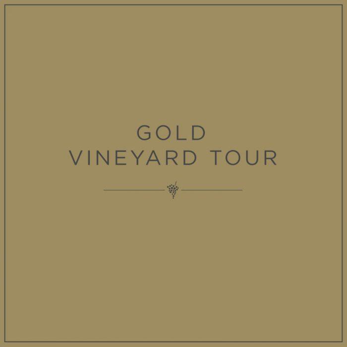 Gold Vineyard Tour