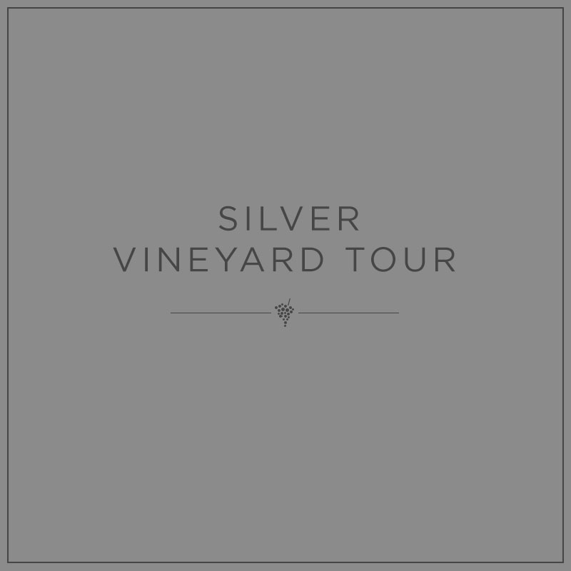Silver Vineyard Tour