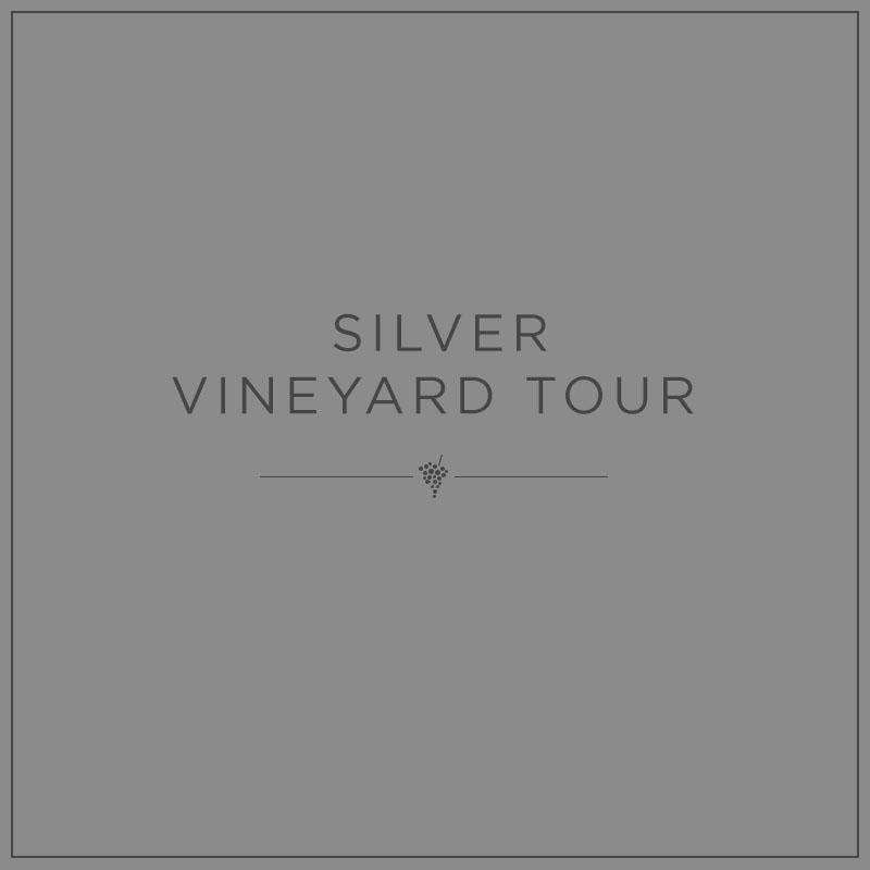 Silver Vineyard Tour